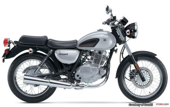 SuzukiTU250X